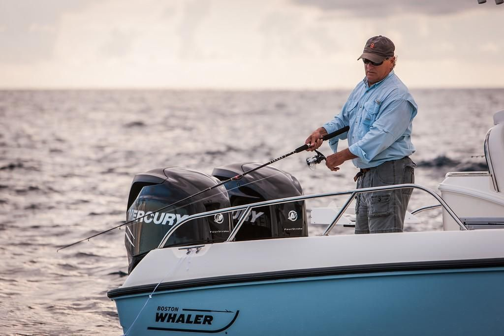 2022 Boston Whaler                                                              270 Dauntless Image Thumbnail #4