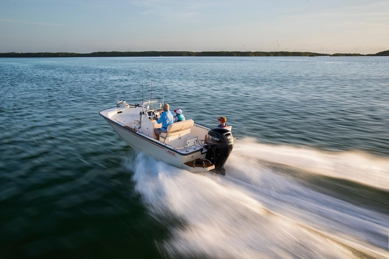 2021 Boston Whaler                                                              170 Montauk Image Thumbnail #2