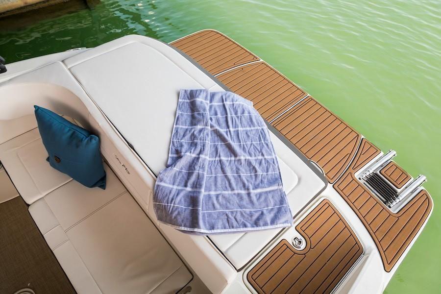2022 Sea Ray                                                              SPX 190  Image Thumbnail #10