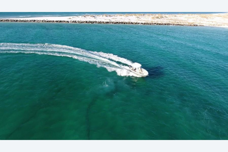 2022 Sailfish                                                              241 CENTER CONSOLE Image Thumbnail #3