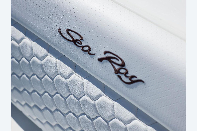 2022 Sea Ray                                                              SDX 250 OB Image Thumbnail #18