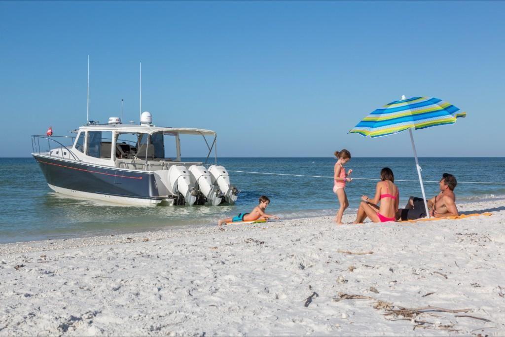 2022 MJM Yachts                                                              43z Image Thumbnail #1