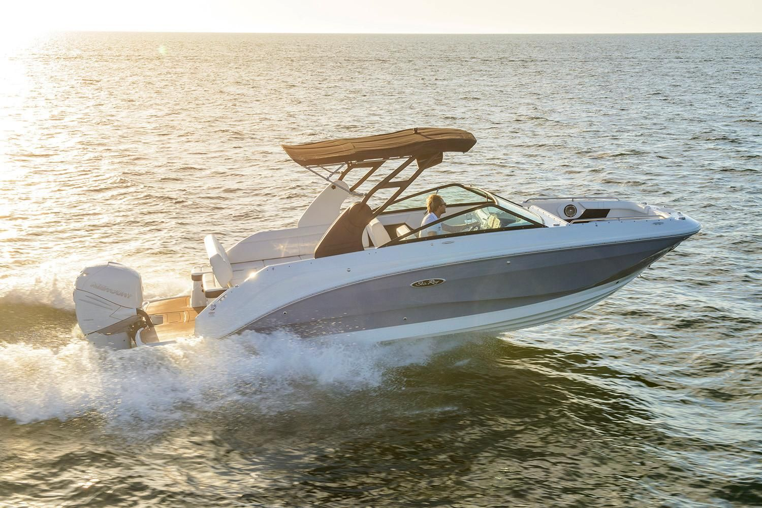 2021 Sea Ray                                                              SDX 250 Outboard Image Thumbnail #1